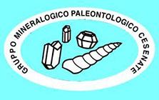 gruppo mineralogico paleontologico