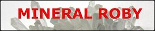 logo sito amico ricercatore collezionista